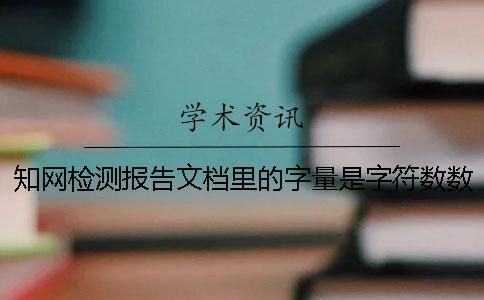 知网检测报告文档里的字量是字符数数还是字量